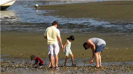 Wellfleet Cape Cod vacation rental - Family on a low tide walk