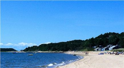 Wellfleet Cape Cod vacation rental - Sea shells
