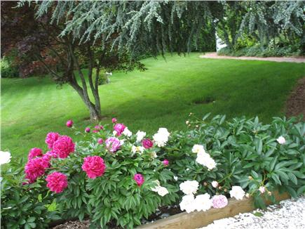 Brewster Cape Cod vacation rental - Approach to house