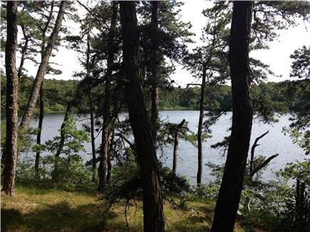 Wellfleet Cape Cod vacation rental - Wellfleet is home to many freshwater kettle ponds, all nearby.