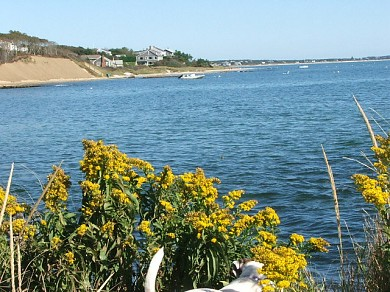 South Harwich Cape Cod vacation rental - Beach views