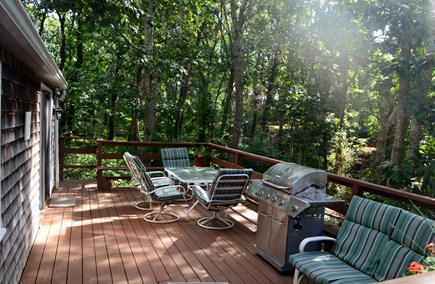 Chatham Cape Cod vacation rental - Large back deck for reading, relaxing, grilling or bird watching.