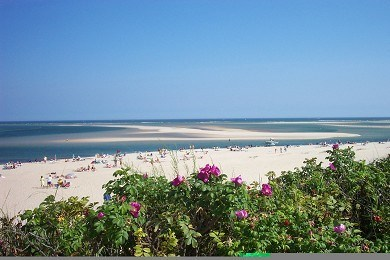 Chatham Cape Cod vacation rental - Prettiest beaches on the Cape