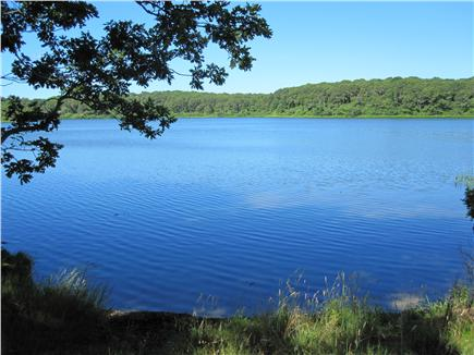 Chatham Cape Cod vacation rental - Just yards away from freshwater Lover's Lake! Kayaks welcome.