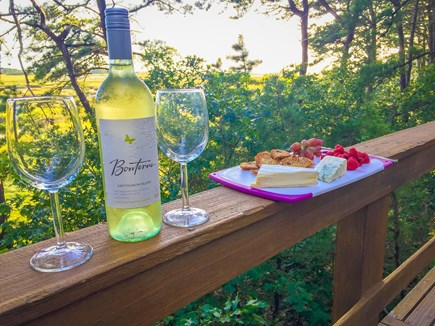 South Wellfleet Cape Cod vacation rental - Enjoy a glass of chardonnay as you take in the view!