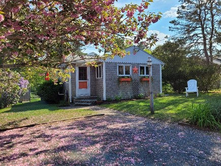 Dennis Port Cape Cod vacation rental - Dennisport vacation rental ID 10584