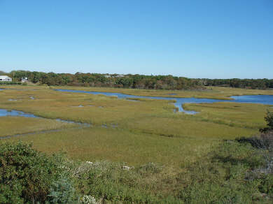 West Dennis Cape Cod vacation rental - View to Backyard