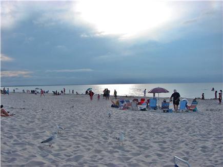 Dennis Cape Cod vacation rental - Popular Mayflower Beach