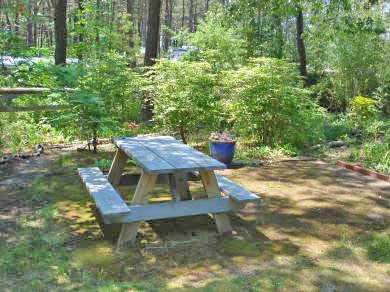 Wellfleet Cape Cod vacation rental - Picnic Area
