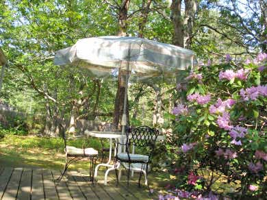Wellfleet Cape Cod vacation rental - Enjoy breakfast in the morning sun