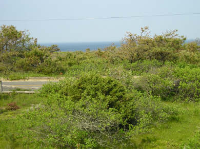 Eastham Cape Cod vacation rental - View of Atlantic Ocean from front deck
