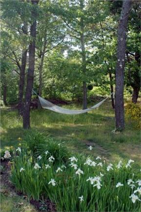 Chatham Cape Cod vacation rental - Leisure area