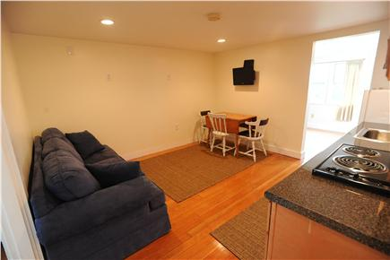 Centerville Centerville vacation rental - Living/dining area with sofabed