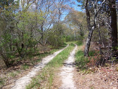 Chatham Cape Cod vacation rental - Private Road to House