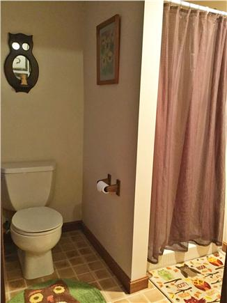 Truro Cape Cod vacation rental - Lowest level bathroom with shower.