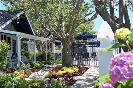 Dennisport Cape Cod vacation rental - Well maintained grounds surround the inground swimming pool.