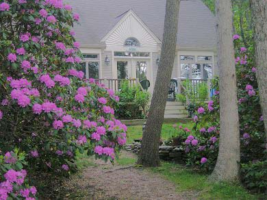 Harwich Cape Cod vacation rental - House is set back far enough for privacy