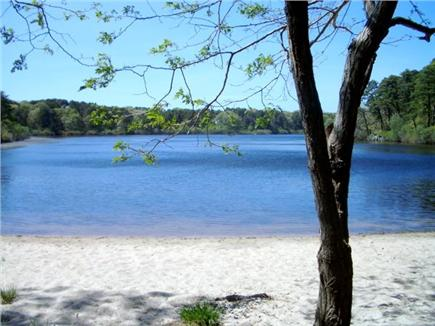 Brewster, Blueberry Pond Cape Cod vacation rental - sandy beach at south pond end