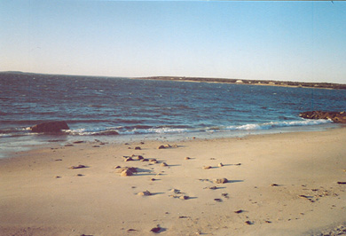 N. Falmouth Cape Cod vacation rental - Barefoot steps to private ocean beach