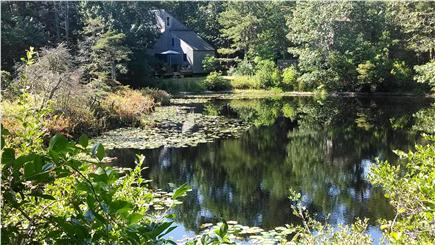 South Wellfleet Cape Cod vacation rental - View of house from across pond