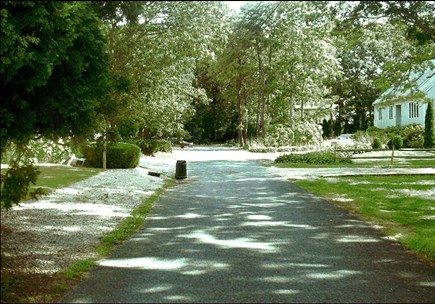 Falmouth Cape Cod vacation rental - Quiet, shady street: our house is to left of foreground