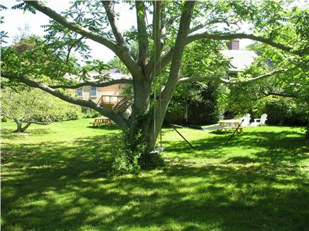 Chatham Harbor, Chatham Town Cape Cod vacation rental - Enjoy our 5 acre estate w 2.4 acres of totally private backyard
