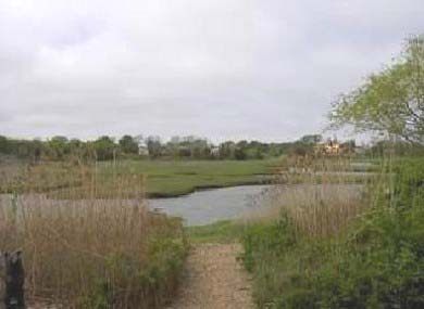 Barnstable Village Cape Cod vacation rental - 15 paces from the back deck to the water