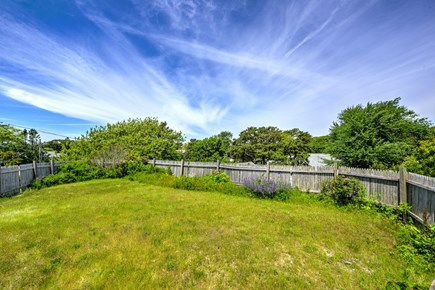 Dennis Port Cape Cod vacation rental - Backyard to play in.