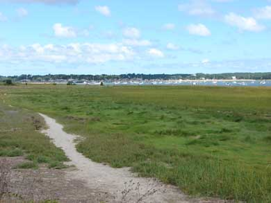Wellfleet Cape Cod vacation rental - Wellfleet Harbor is in walking distance from house