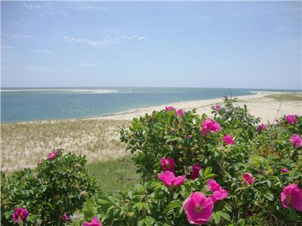 Chatham Cape Cod vacation rental - Lighthouse Beach late Spring 2016