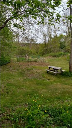 Wellfleet central located Cape Cod vacation rental - Back yard