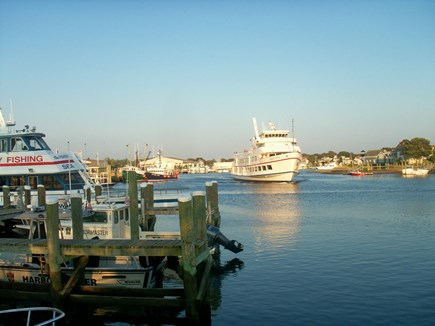 South Yarmouth Cape Cod vacation rental - Your cruises, fishing trips or kid's fun start here