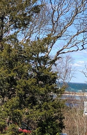 West Falmouth Cape Cod vacation rental - View of Woodneck Beach from the outdoor patio.