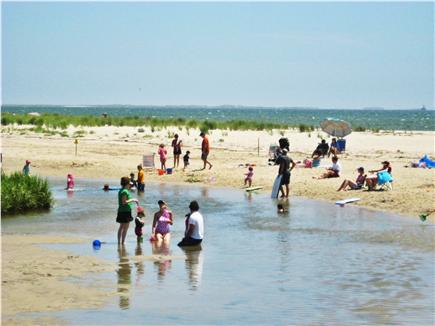 Chatham Cape Cod vacation rental - Ridgevale Beach is great for kids
