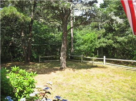 Chatham Cape Cod vacation rental - Part of front yard. Our ''street'' is between the fence & trees.