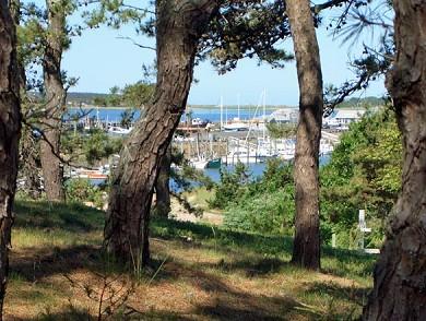 Wellfleet Cape Cod vacation rental - Wellfleet Vacation Rental ID 13317