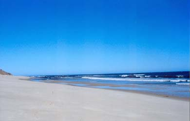 Wellfleet Cape Cod vacation rental - Nearest ocean beach -  LeCount Hollow less than a mile
