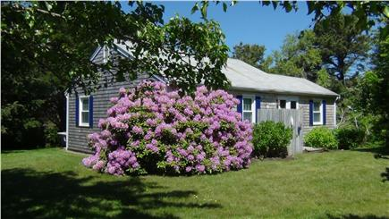 East Orleans - Nauset Heights Cape Cod vacation rental - Orleans Vacation Rental ID 13418