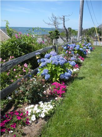 Dennis Port Sea Street Beach Cape Cod vacation rental - Garden and view of Nantucket Sound from front of cottage