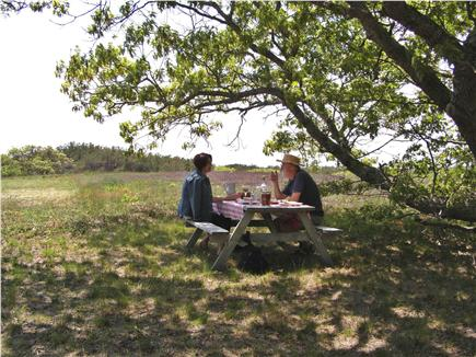 Wellfleet (National Seashore) Cape Cod vacation rental - Lunch under the Oak