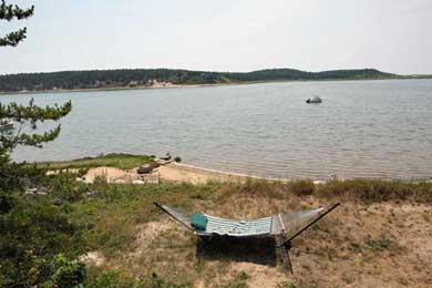 Chequessett Neck Wellfleet Cape Cod vacation rental - Relax in the hammock overlooking the Bay