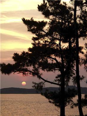 Chequessett Neck Wellfleet Cape Cod vacation rental - Enjoy sunset from the deck
