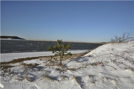 Chequessett Neck Wellfleet Cape Cod vacation rental - Winter beach glistens