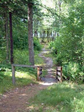 Harwich Cape Cod vacation rental - Back yard path thru property to the pond