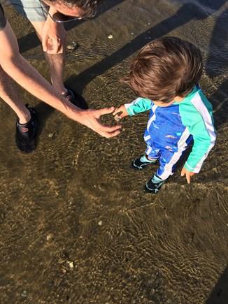 Wellfleet Cape Cod vacation rental - Explore the beach