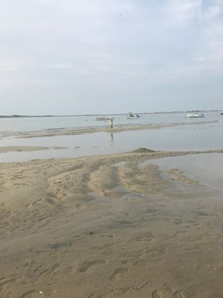 Barnstable Cape Cod vacation rental - Explore sandbars as the tide comes in/out.