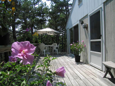 Truro Cape Cod vacation rental - Truro Vacation Rental ID 14928