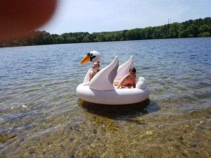 Dennis Cape Cod vacation rental - Granddaughters on clean Flax Pond 2018