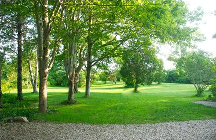 Barnstable Village Cape Cod vacation rental - Parklike setting backyard for playing and peaceful relaxation