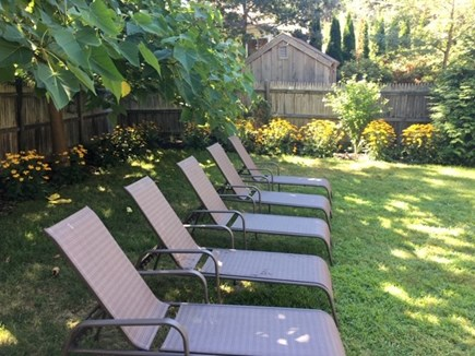 Truro Cape Cod vacation rental - Plenty of chairs where you can relax in the yard in the shade